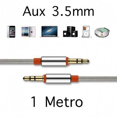 Cable aux 1m