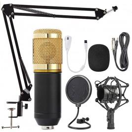 Microfono profesional grande