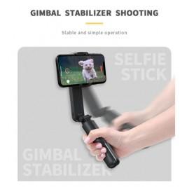 Palo selfie Estabilizador
